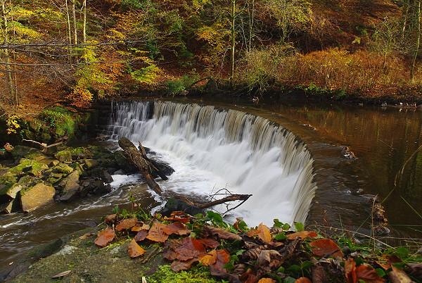River Darwen