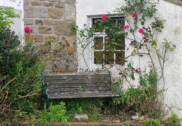 A quiet corner of Crail