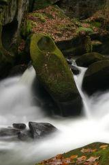 River Spodden