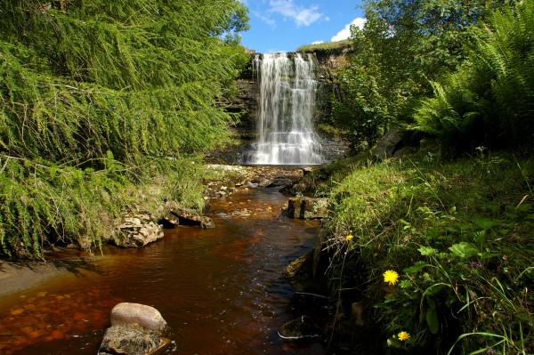 Hell Gill Force