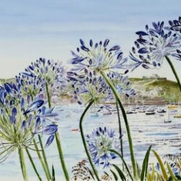 """""""Agapanthus Harbour"""" St Marys, Isles of Scilly"""