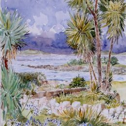 """""""Agapanthus, Thomas Porth"""", St Marys, Isles of Scilly"""