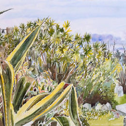 """Agave Panorama from Old Town Churchyard"", St Marys, Isles of Scilly"