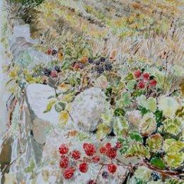 """""""Blackberries Peninnis"""", St Marys, Isles of Scilly"""