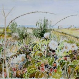 """""""Bramble Hedge (Peninnis Head)"""" St Marys, Isles of Scilly"""