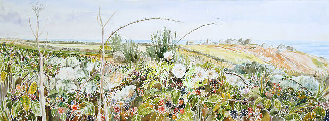 """Bramble Hedge, Penninis, St Marys, Isles of Scilly"