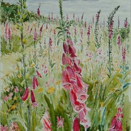 """""""Foxglove Morning, Garrison"""", St Marys, Isles of Scilly"""