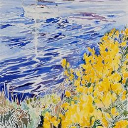 """""""Gorse over Tresco Channel"""", Isles of Scilly"""