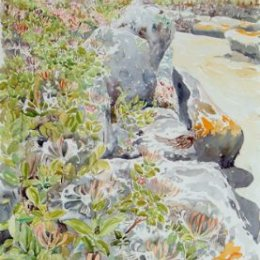 """""""Loaded Camel and Honeysuckle"""", St Marys, Isles of Scilly"""