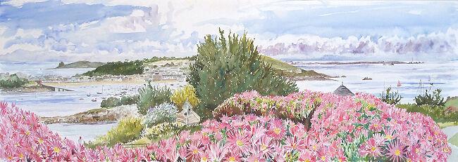 """Moyana Mesembryanthemums"", Porthloo, St Marys, Isles of Scilly"
