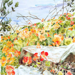 """The Headmaster's Nasturtiums"", St Marys, Isles of Scilly"