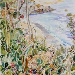 """""""Pelistry Blackberries"""", St Marys, Isles of Scilly"""