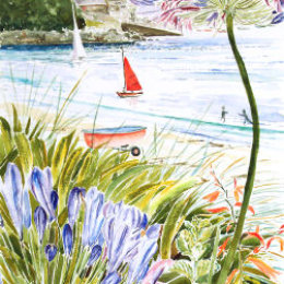 """Red Sail and Agapanthus"" Porthmellon, St Marys, Isles of Scilly"