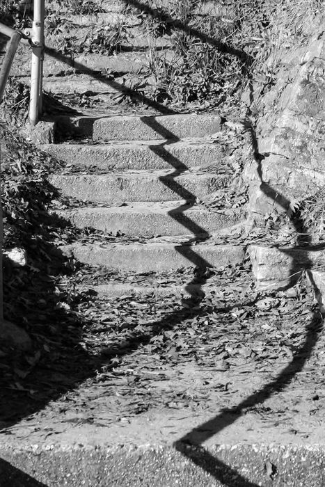 Steps and Shadows, Mudeford, Dorset