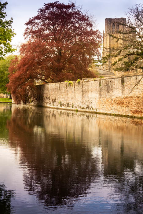Bishop's Palace and Moat, Wells - portrait format