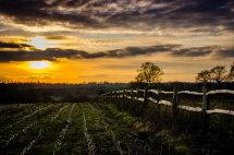 A Send Sunset