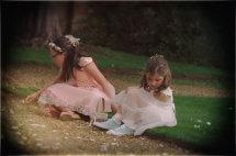 Confetti Fairies