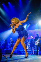 The Tina Turner Experience II