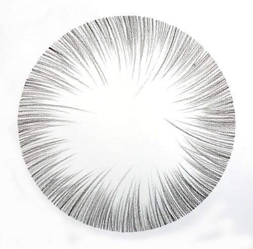Feathered Edge Circle Study