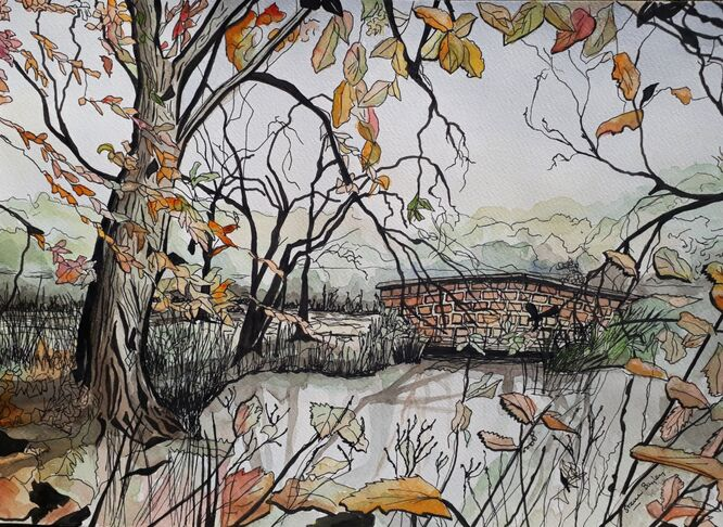 Calderstones little bridge - A3 Ink and Watercolour