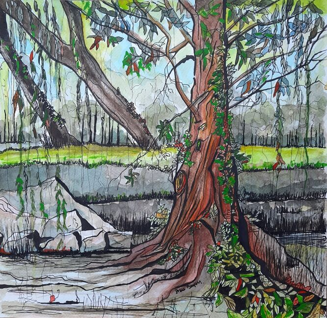 Calderstones by the small pond - 30cm x 30cm in pen and watercolour.