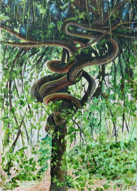 Calderstones Park, The python tree, Acrylic on canvas. 50cm x 70cm