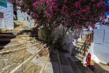 A Street in Ano Syros (c)