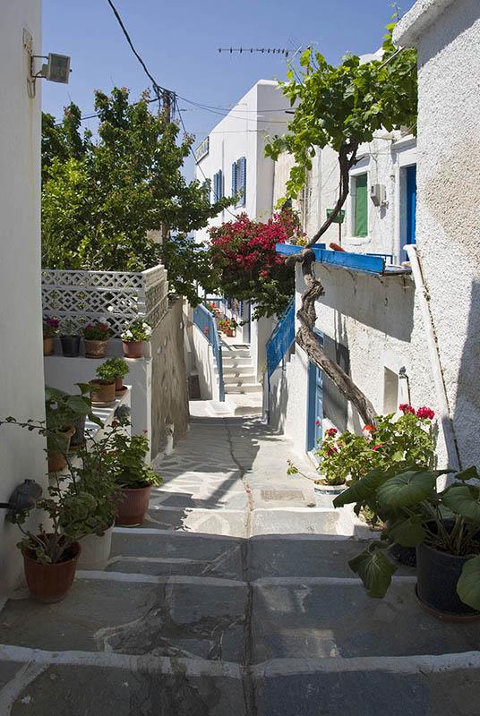 A Street in Naxos Town. (a)