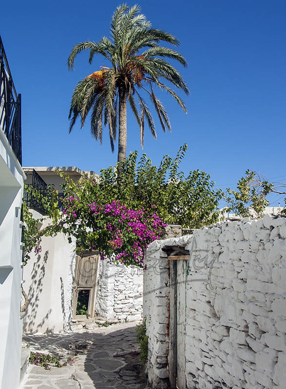 A back street in Paroikia (a).
