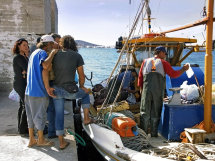 Locals buying fish at the docks in Pounda.