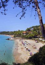 Platis Gialos Beach, Lassi.(b).