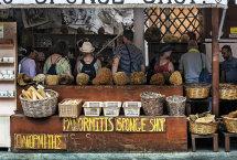 The Sponge Shop