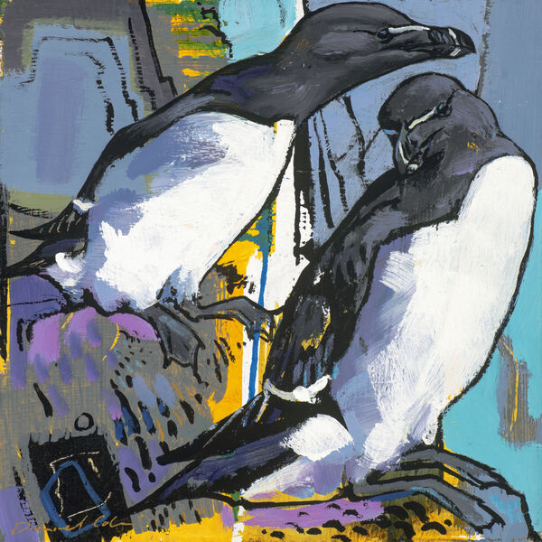 Daniel Cole SWLA - Razorbills - Oil on board - 19x19cm £400