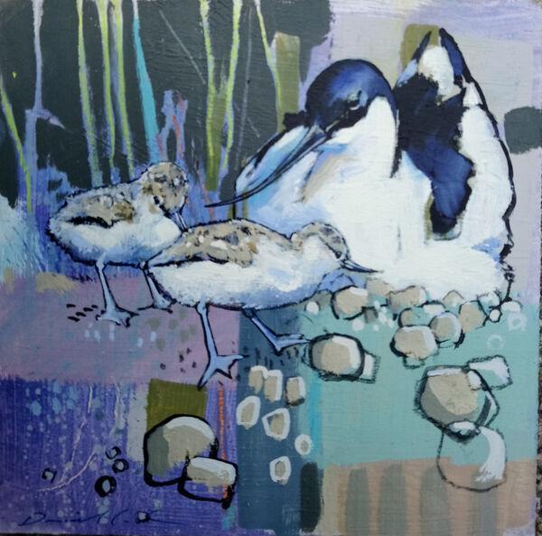 Daniel Cole Two Avocets and chicks - Oil on board - 19 x 19 cm £400