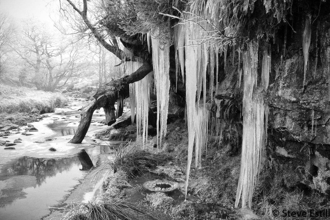 Ellerbeck Icicles