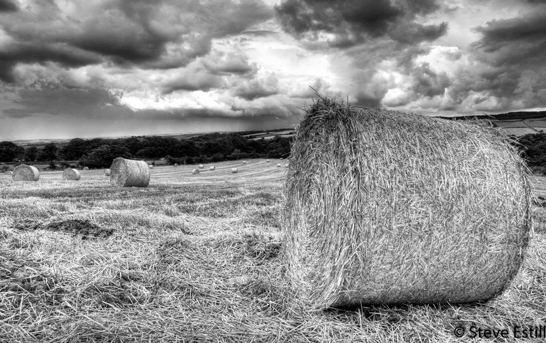 Stormy Corn Bales