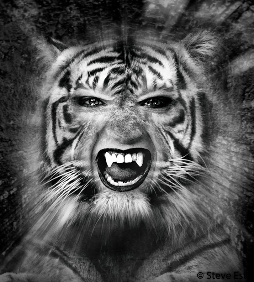 Tiger's Smile