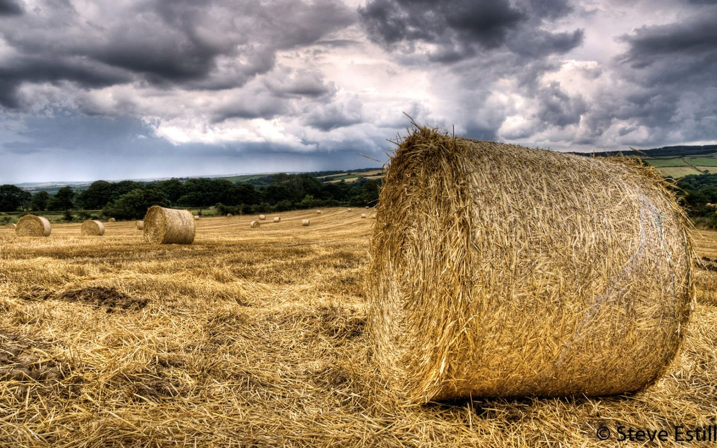 stormy corn bales