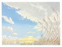 Avalon Marshes I