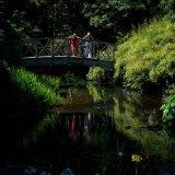 Bridge_Reflections