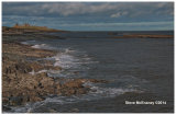 Northumberland_Coast_at_Craster_03