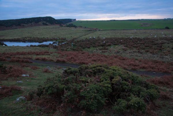 Dunstanburgh_Landscape