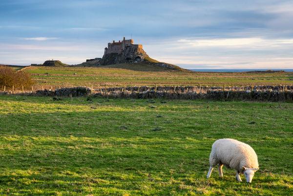 Northumberland_13