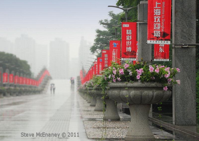 Century Park in the Mist