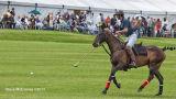 Toulston Polo Match 01