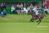 Toulston Polo Match 16