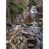 Falls of Bruar, Blair Atholl, Perthshire