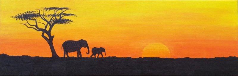 African Plains
