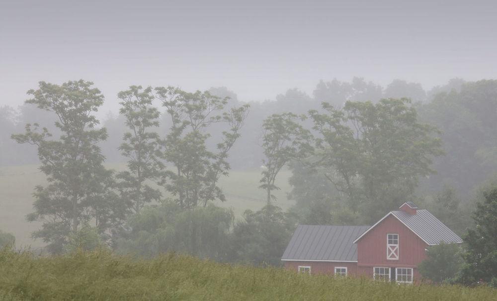 RDV . Virginia . USA