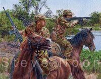 Grey's Scouts, Rhodesian Bush War.